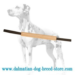 Compact-Sized Dalmatian Training Hard Leather Bite Tug