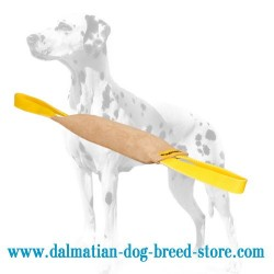 'Quick Grip' Dalmatian Training Dog Bite Tug of Leather
