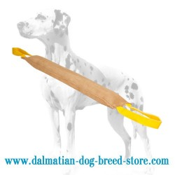 Extra Large Dalmatian Training Dog Bite Tug of Leather