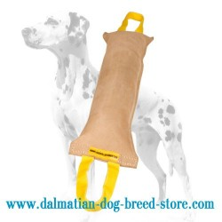 Dalmatian Training Dog Bite Tug with Handles for Secure Grip
