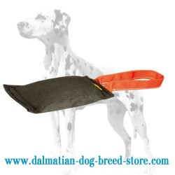 Pocket-sized Dalmatian Training Leather Bite Tug