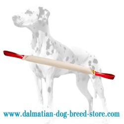 Retrieve Training Dalmatian Dog Bite Tug Made of Fire Hose