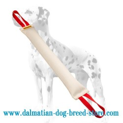 Easy-to-Use Dalmatian Training Dog Bite Tug of Extra-Strong Fire Hose