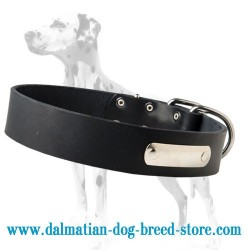 Multipurpose leather dog collar with id tag for Dalmatian breed