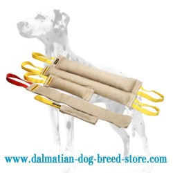 Dalmatian Dog Bite Training Set of Jute Tugs