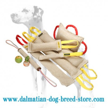 Dalmatian Training Set of Jute Bite Tugs + 3 Amazing Gifts