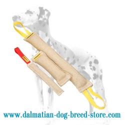 Dalmatian Training Dog Jute Bite Tugs in 1 Set