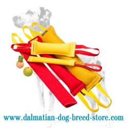 'Extended Training' Dalmatian Tugs Set with 3 Rubber Balls as a GIFT