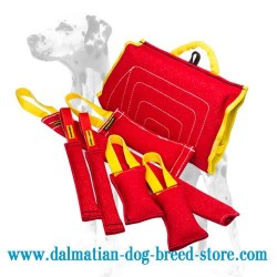 Amazing Dalmatian Puppy Training Set of 7 Items