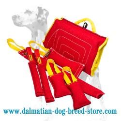 Amazing Dalmatian Puppy Training Set of 7 Items