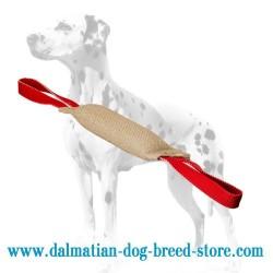Tear-Resistant Dalmatian Dog Training Jute Bite Tug