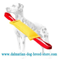 Colorful Dalmatian Training French Linen Dog Bite Tug