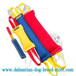 Dalmatian Training Set of French Linen Tugs with FREE GIFT