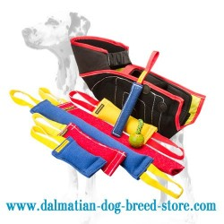 Diversified Dalmatian Dog Training Set + 3 Bite Tugs for FREE!!!