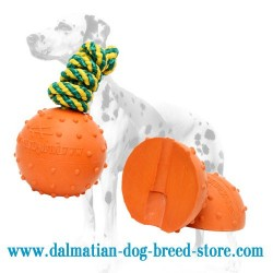 Dalmatian Dog Ball of Solid Rubber with Nylon String