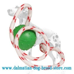 'Joy & Train' Dalmatian Dog Water Ball on the String