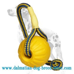 'Go Get It' Dalmatian Dog Foam Ball with String