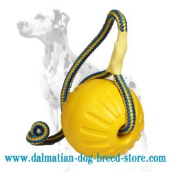 'High Fly' Dalmatian Dog Ball of Foam Rubber
