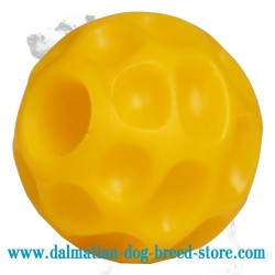 'Challenging' Dalmatian Dog Ball with Hole for Treats - SMALL