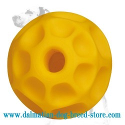 'Honeycomb' Dalmatian Dog Chew Toy for Treats and Kibbles - LARGE