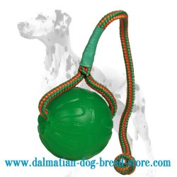 'Roll and Throw' Dalmatian Dog Chew Ball