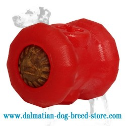 'Imperishable' Dalmatian Dog Chew Toy