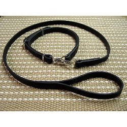 "Police / hunting"" dog leash and  collar (combo)"