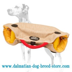 Dalmatian Young Dog Training Jute Grip Builder