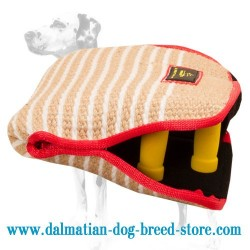 Dalmatian Dog Bite Builder for Successful Training