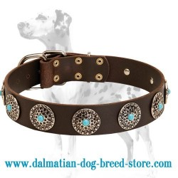 Dalmatian Leather Dog Collar with Shiny Circles and Blue Stones