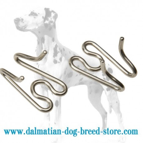 Dalmatian Dog Prong Collar Stainless Steel Extra Link