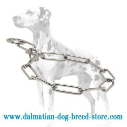 Shiny Dalmatian Dog Choke Chain Collar