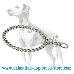 Easy to Use Dalmatian Dog Choke Collar of Chrome Plated Steel