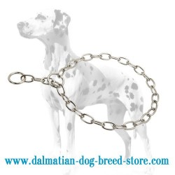 Behavior Correcting Dalmatian Dog Choke Chain Collar