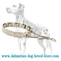 HS-Made Dalmatian Dog Stainless Steel Neck Tech Collar