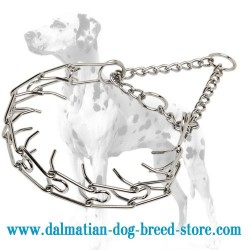 'Calm Down Effect' Dalmatian Dog Pinch Collar
