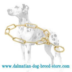 'Chain Trainer' Dalmatian Dog Choke Collar Made of Brass