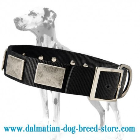 Glorious Nylon Dog Collar For Dalmatian Breed