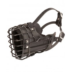 Safe Dalmatian Wire Cage Muzzle For Winter Season