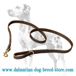 Handcrafted Dalmatian Leather Dog Leash