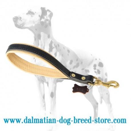 'Better Control' Dalmatian Dog Short Leash