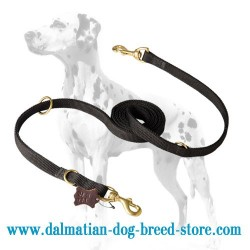 All weather Police Dalmatian Dog Leash