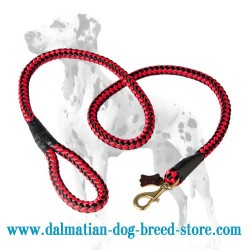 Cord Dalmatian Dog Leash 4/5 inch wide