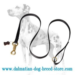 'Smart Lock' Dalmatian Dog Leash of Nylon