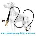 'Smart Lock' Dalmatian Dog Leash of Nylon