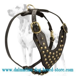 Hand-made Dalmatian Studded Walking Dog Harness