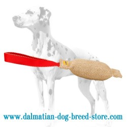 Extra Durable Dalmatian Dog Bite Tug for Training
