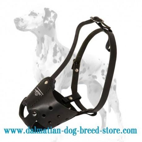Everyday Elegant Leather dog muzzle for Dalmatian