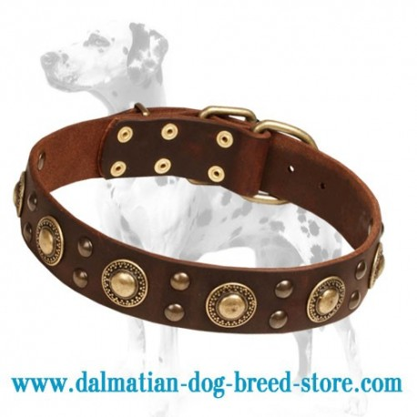 'Golden Knights' Dalmatian Dog Collar