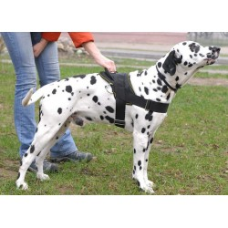 Super Durable Nylon Multi-purpose Dog Harness for Dalmatian Breed